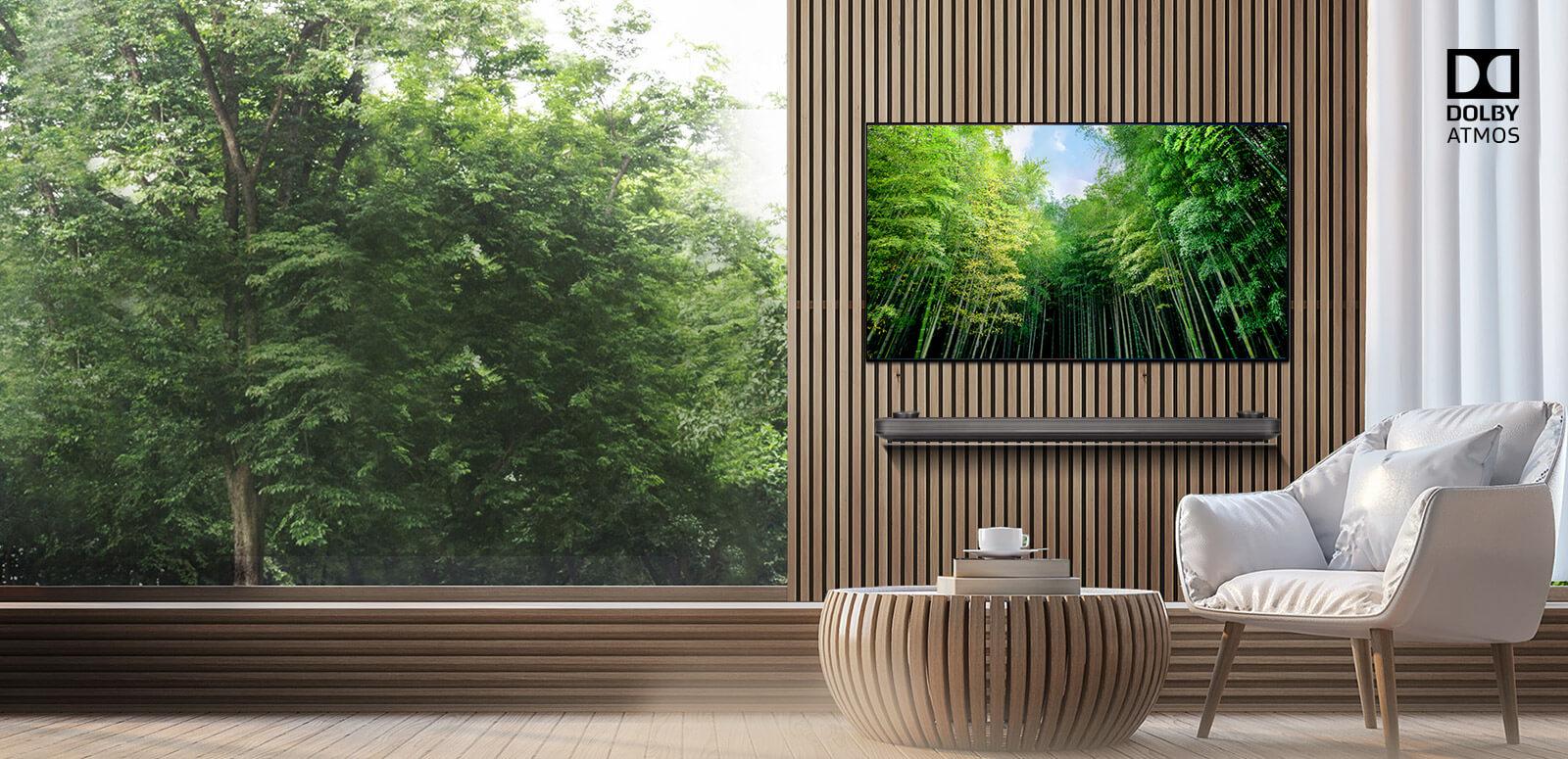 LG OLED mit Dolby Atmos®