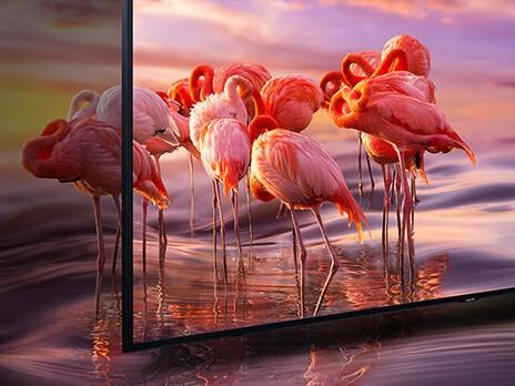 Samsung Q65R Farbvolumen